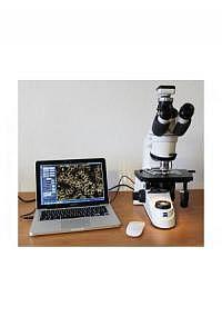Zeiss Axio Lab.A1 - Dunkelfeld mit Kamerasystem